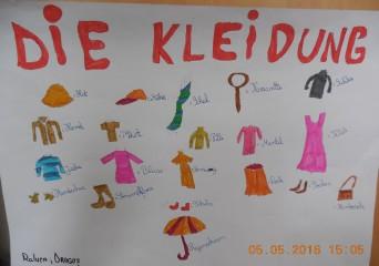 Paideea - Cursuri limba germana